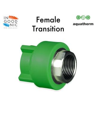 Female BSP `Hexagon' Transition